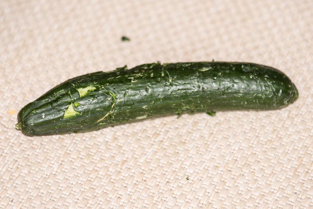 Salatgurke